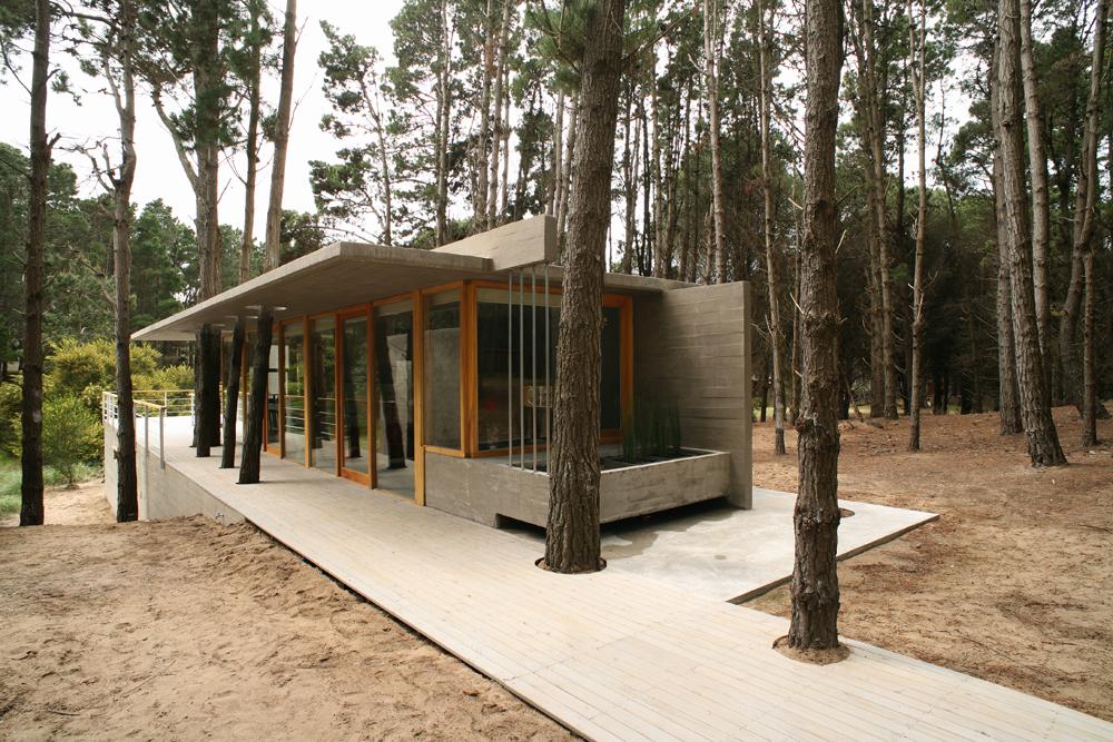 House Among Trees - Martín Fernández de Lema, Nicolás Moreno Deutsch, CASAS-DE-PLAYA, arquitectura, casas